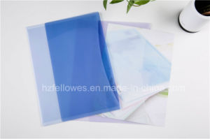 Document Bag Type, File Folder with Flap pictures & photos