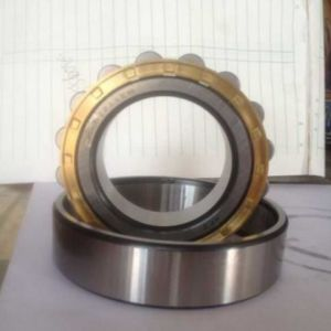 Cylindrical Equipment Rolling Bearing Nup309en pictures & photos