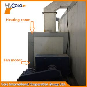 Gas Heating Powder Curing Furnaces with Inner Trolley Loading to Kenya pictures & photos