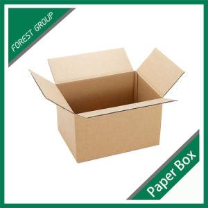 Standard Rsc Kraft Paper Box pictures & photos