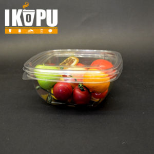 Renewable Fruit Salad Bowl with Lid pictures & photos