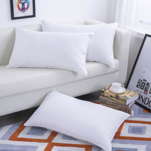 China Factory Cheaper White Standard Hotel Pillow pictures & photos