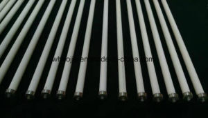 Ignition Electrodes for Boiler Ignition System pictures & photos