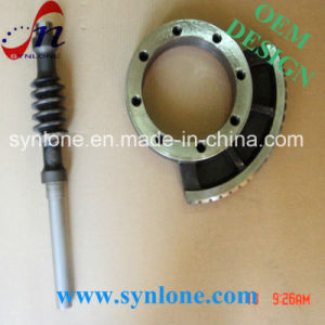 Customized Worm Wheel and Worm Shaft pictures & photos