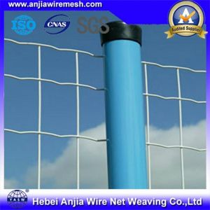 Powder / PVC Coated Holland/Euro Fence Wire Mesh Fence for Building Construction pictures & photos
