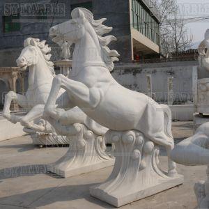 Marble Apollo Fountain Mf-114 pictures & photos