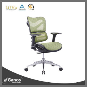 Nylon Frame High Back Green Mesh Office Chair pictures & photos