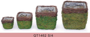 Home and Garden Decorative Square Moss Flower Flower Panter pictures & photos