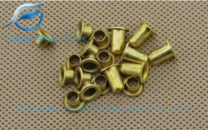 Hollow Eye Copper Rivets Nut, Brass Flanged Head Rivet Collars pictures & photos