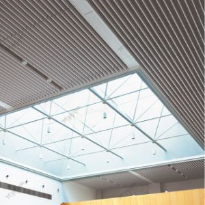 High Quality Factory Price Extrusion Screen Baffle Ceiling pictures & photos