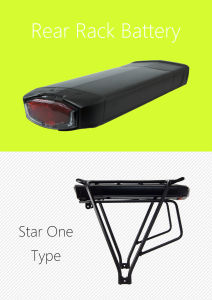 48V 11.6ah 2900mAh Lithium Battery Pack with Rear Rack Case for Electric Bike pictures & photos
