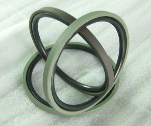 NBR/FKM+PTFE Hydraulic Piston Seal OE Type Rubber Ring pictures & photos