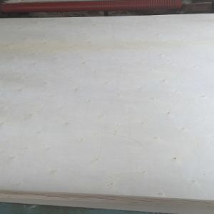18mm Full Poplar Plywood Poplar/Hardwood/Combi Core pictures & photos