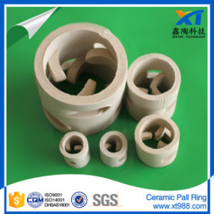 Heat Resistance Ceramic Pall Ring Tower Packing pictures & photos