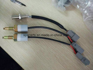 Speed / Fuel Pressure/ Temperature Sensor and Switch pictures & photos