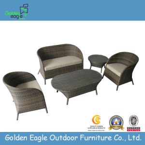 PE Synthetical Rattan Hand Make Sofa (S0086)