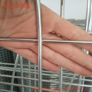 Corrosion Resistant Galvanized 1/2′′ / 3/4′′ Hole Size Roll Welded Wire Mesh pictures & photos