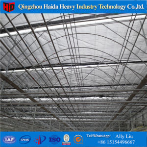 Agticulture Plastic/ Glass Vegetable Greenhouse for Sale pictures & photos