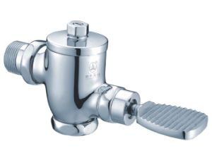 Delayed-Time Flush Valve with Hand (B-30C) pictures & photos