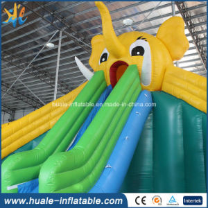 Inflatable Water Slide for Adult and Kids, Giant Water Slide, Inflatable Water Slide Parts pictures & photos