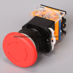 Keyway Mushroom-Emergency Pushbutton Switch pictures & photos
