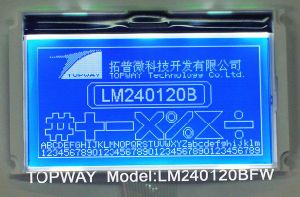 240X120 Graphic LCD Module Cog Type LCD Display (LM240120B) with High Quality pictures & photos