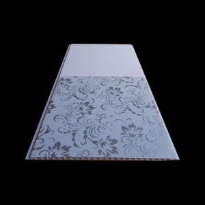 PVC Panel (3030) pictures & photos