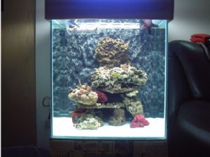 LED Aquariums Light 30W