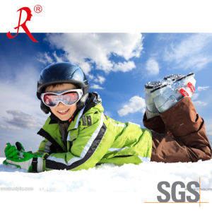 Waterproof and Breathable Ski Jacket (QF-6082) pictures & photos
