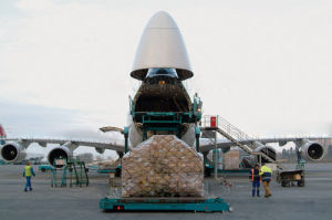 Fast Air Freight From China to Miland