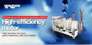 Multi - Crystal Furnace Used Hokaido Dry Screw Vacuum Pump (RSE250) pictures & photos