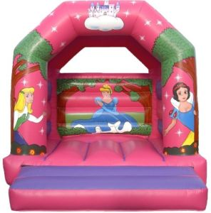 Inflatable Bouncer (FC-670)