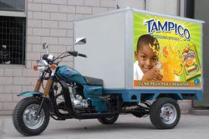 Three Wheeler Cargo Tricycle 150 200cc Motor Trike