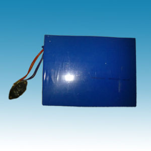 12V/20ah Lithium Iron Phosphate Battery Packs pictures & photos