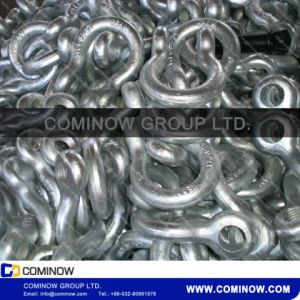 G209 Screw Pin Anchor Shackle / Us Type Drop Forged Bow Shackle Galvanized pictures & photos