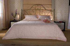 Beautiful Bedding Set pictures & photos