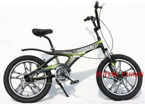 "20"" Aluminum OPC Wheel Freestyle BMX Bicycle (FP-FSB-H04) pictures & photos"