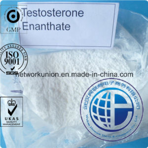 Semi-Finshed Injection Steroid 250mg/Ml 315-37-7 Testosterone Enanthate pictures & photos