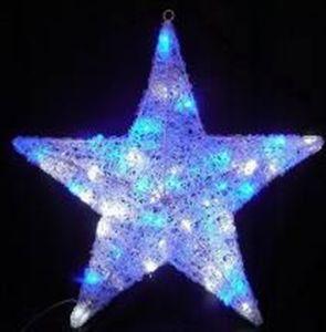 Net Light Star Light pictures & photos