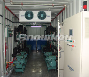 Containerized Water Chiller-Snowkey pictures & photos