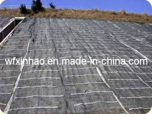 PE/PP Woven Weed Control Fabric /Mat pictures & photos