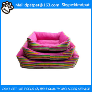 Wholesale High Quality Pet Supplies pictures & photos