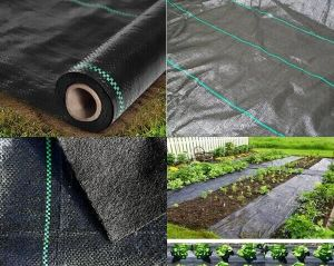 Landscape Fabric/ Plastic Ground Cover/Weed Mat Ground Cover pictures & photos