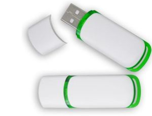 Advertising Promotional Gifts Plastic USB Flash Memory pictures & photos