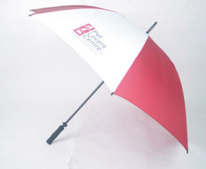 6k Frame Advertising Umbrella (BD-09) pictures & photos