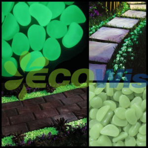 Quality Glow in The Dark Pebbles for Walkways pictures & photos