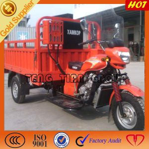 Gasoline Cargo Tricycle/Three Wheel Motorcycle pictures & photos
