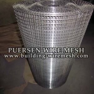 Stainless Steel Coil Welded Wire Mesh with Ss Material pictures & photos