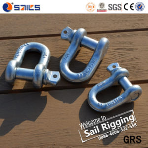 High Tensile Us Type Screw Pin D Shackle pictures & photos