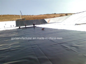 Black Color Plastic HDPE Geomembrane Price pictures & photos